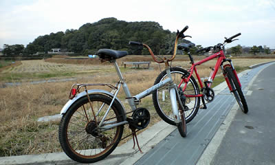 20081213_bicycle_04.jpg