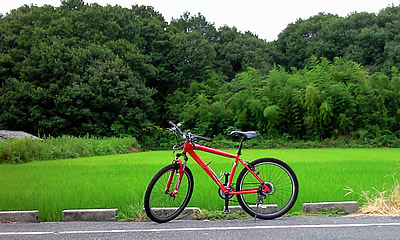 20090831_bicycle.jpg